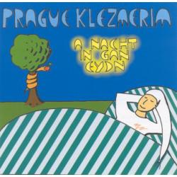 CD Klezmerim: A nacht in...